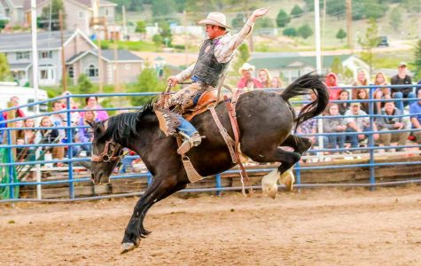 What To Know About Rodeo