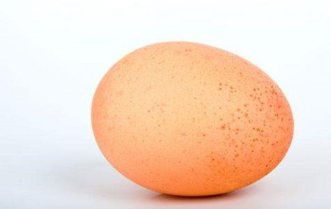 An Egg Cracks The Instagram Record