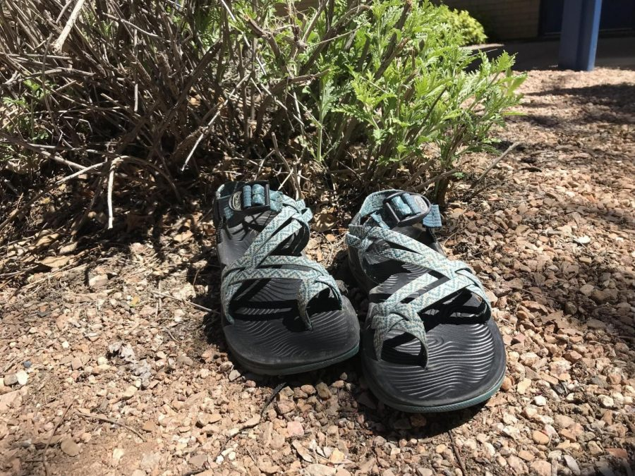 Chacos Rocko