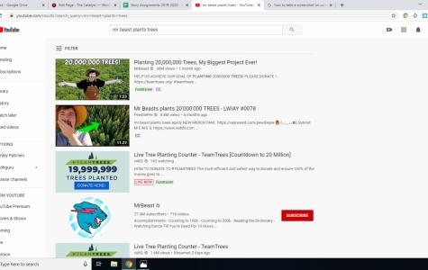 Philantropist YouTuber Plants 20 Million Trees